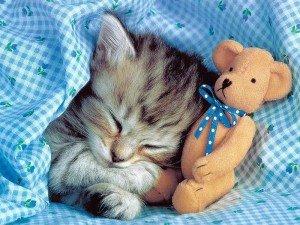Petite sieste :)
